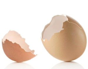 Making calcium from eggshells