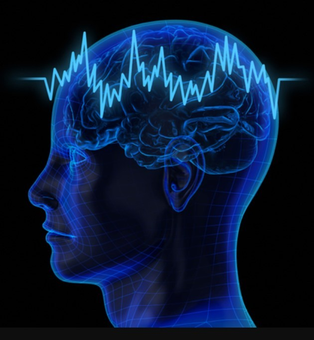brainwave activity